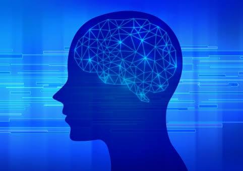 脳の働きや仕組み